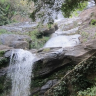 Excursion: The Natural History of Doi Inthanon 2